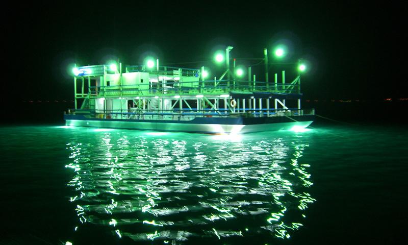 成發夜釣小管海上娛樂堡壘
